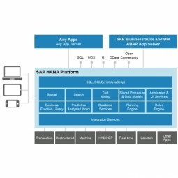 Driving High Performance with SAP Business Suite