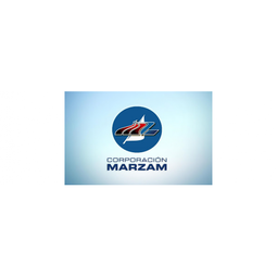 Fleet Management Connectivity Solution for Marzam
