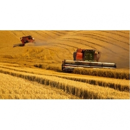 IoT Transforming Agribusiness
